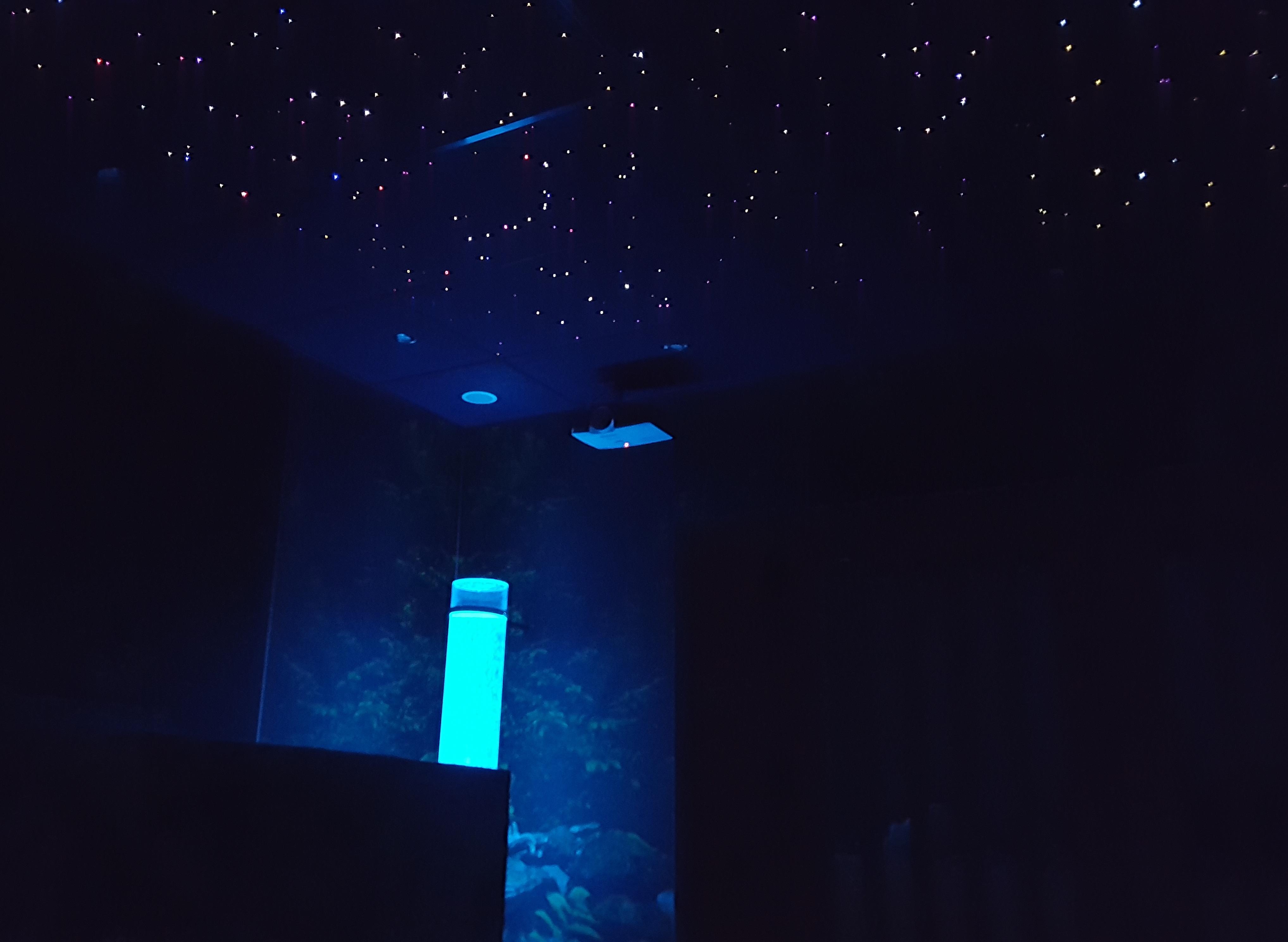 snoezelen snoezelruimte snoezen sensopatisch best snoezelkamer dementie materiaal projector therapie sensopatisch materiaal kopen ouderen producten sterrenhemel plafond verlichting